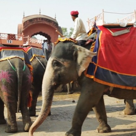 A Passage through India with Kim Jones & Peter Lindbergh [video]