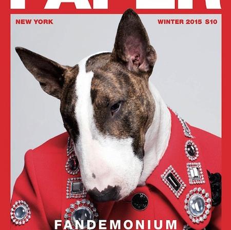 Paper Mag – Fandemonium Issue