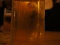 3_drink_2